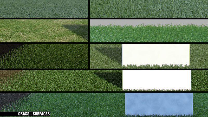 Grass_board_6