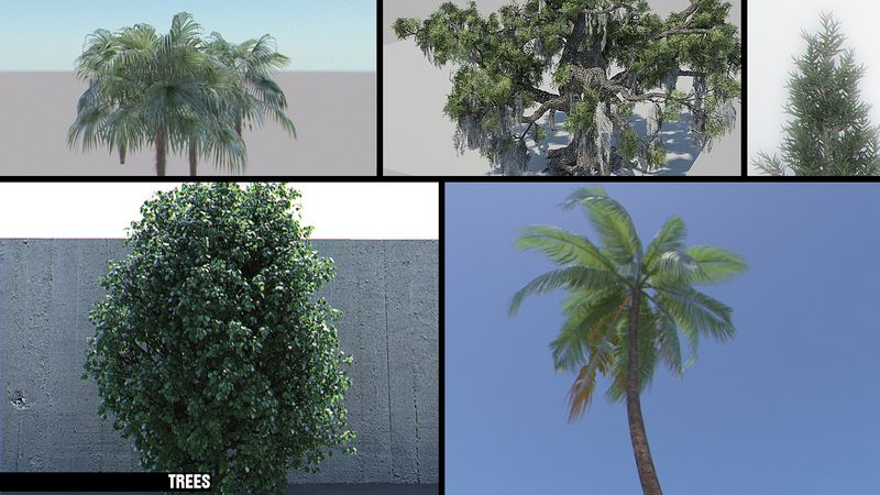 Trees_board_1